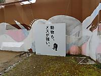 Cimg1407