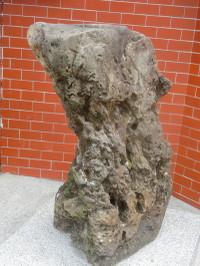 Cimg4983