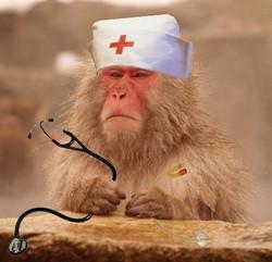 Monkey_nurse